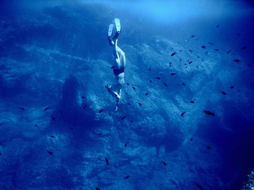 water diver under water diver
