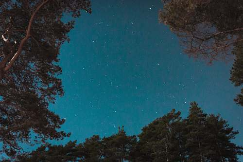 teal low angle photography of stars sweden