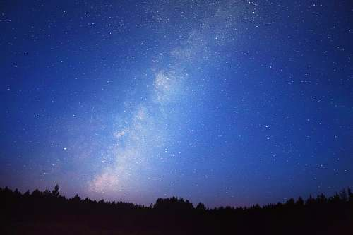 night Milky Way Galaxy above trees photography astronomy