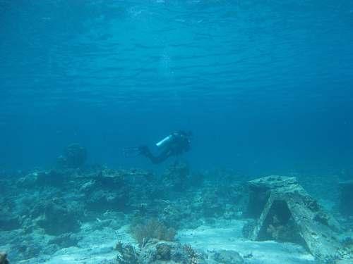 ocean person scuba diving in the ocean sea