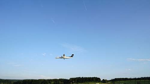 adventure white commercial plane flying over trees during daytime leisure activities