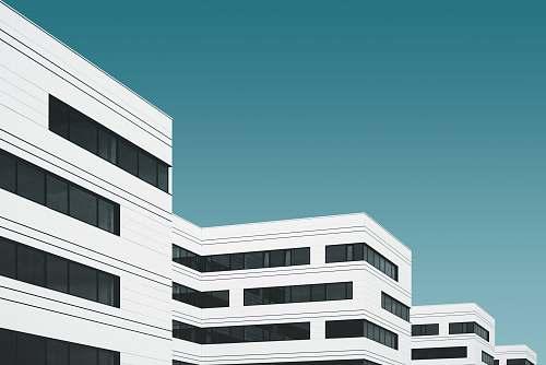 urban white concrete building illustration building