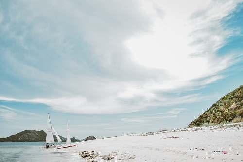 transportation white sailboat on seashore vehicle