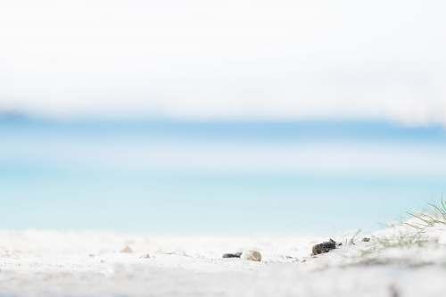 beach white shore under sunny sky sand