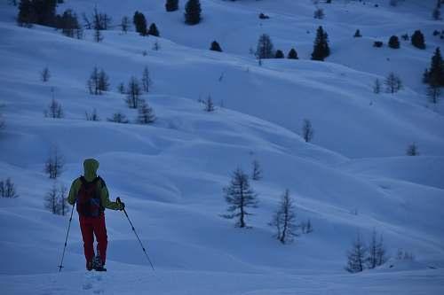 person man walks with ski poles at snowfield human