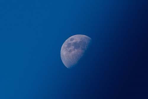 moon photo of half-moon space