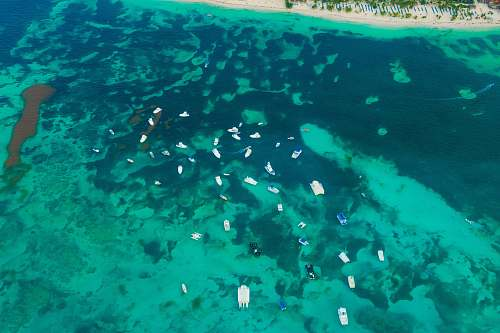 water aerial photography of boats on body of water reef