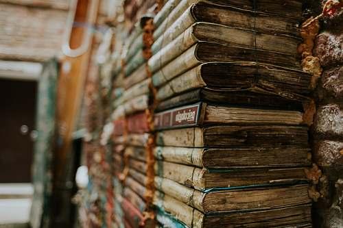 library  bookshop