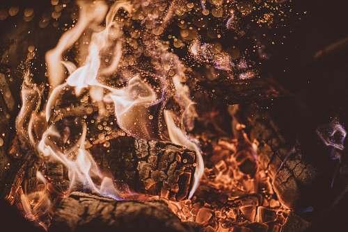 flame firewood burning burning