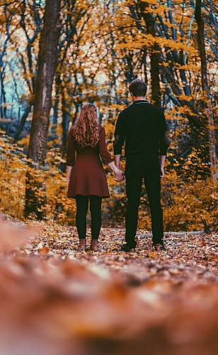 person man in black long-sleeved shirt holding woman hand near trees during daytime people