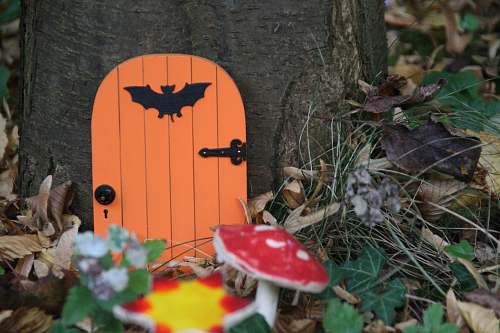 person orange door in tree near mushrooms people