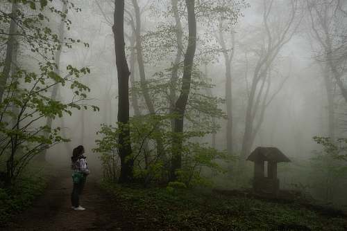 weather woman in white jacket standing in the forest person