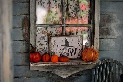 pumpkin Halloween decor vegetable