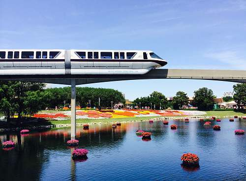 monorail white train and bridge rail