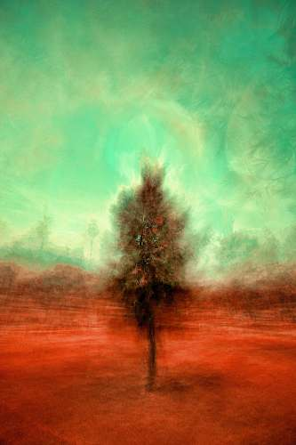 plant painting of brown tree nature