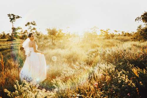 bride woman in white gown on grassland grass