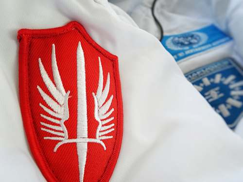 accessory red winged-sword patch tie