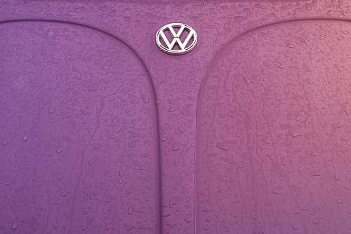 grey pink Volkswagen Beetle hood beetle