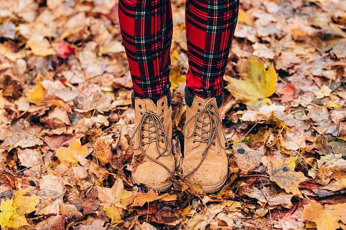 fall person standing on withered leaves plaid