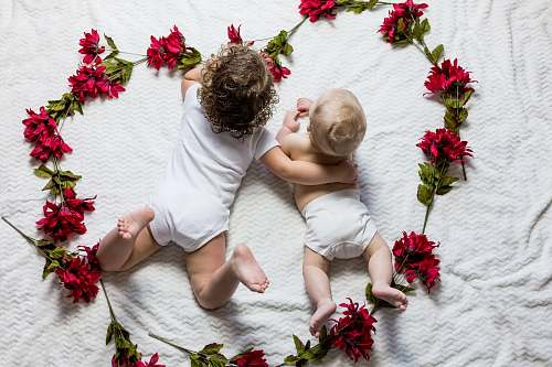 human two baby's lying surrounded by red petaled flowers person