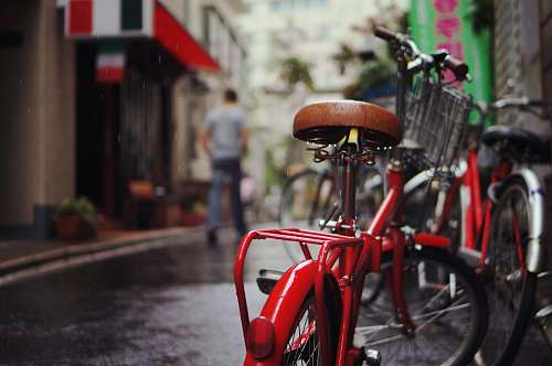 bike selective focus photography of red bicycle human