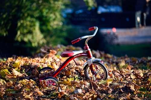 bicycle red Radio Flyer trike on brown dried leaves tricycle
