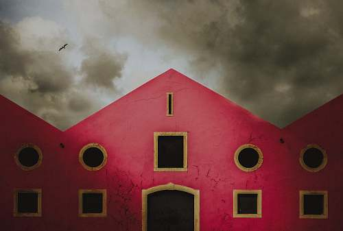 animal pink and white concrete house painting lisbon