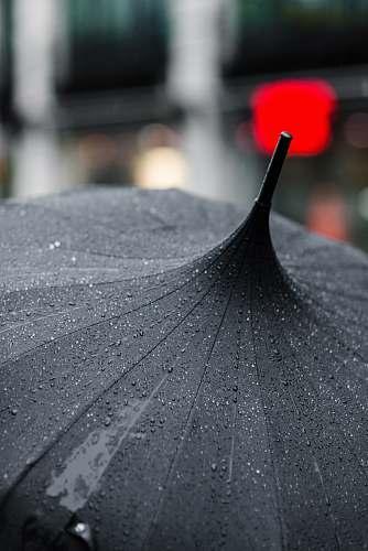 umbrella selective focus photography of black umbrella drop