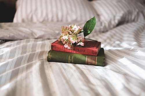 flower two books on bed books