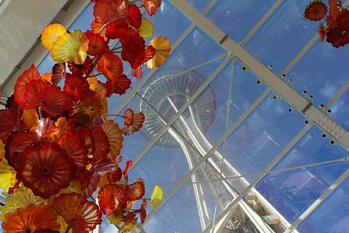ceiling worm view of space needle during daytime decoration