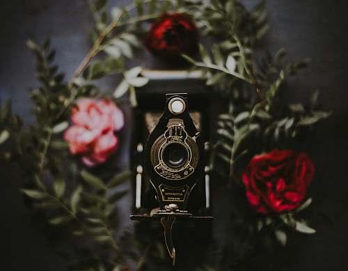 electronics tilt shift lens photography of black land camera produce