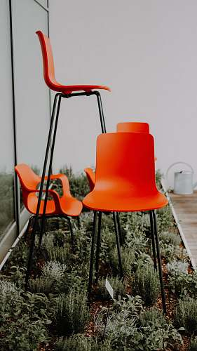 furniture three assorted-size orange chairs on green garden germany
