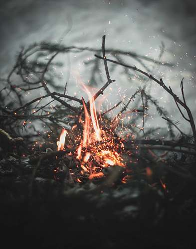 flame bonfire selective focus photography saint petersburg