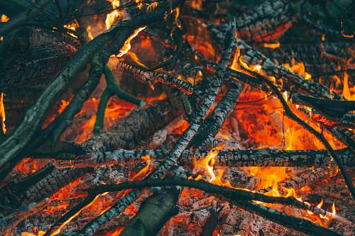 camping firewoods on fire twigs