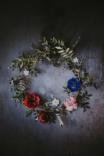 flower blue, red, and pink floral wreath blossom