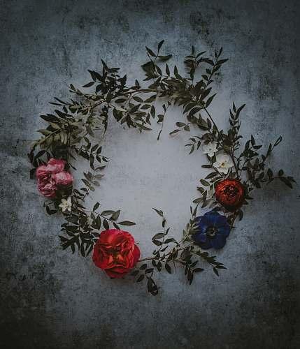 vase assorted flower wreath flora