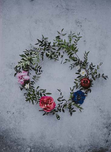 blossom red, blue, and white flower wreath on white concrete rose