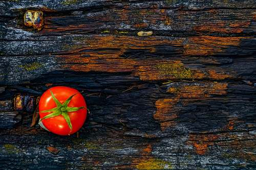 vegetable red tomato on brown log flora