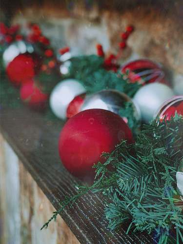 plant red, white, and silver baubles food