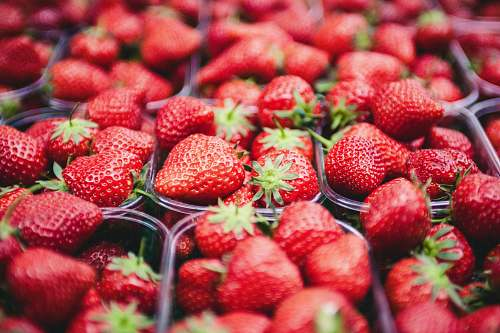 food selective focus photo of strawberries in clear plastic containers strawberry