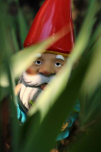 person gnome standing on green grass during daytime people