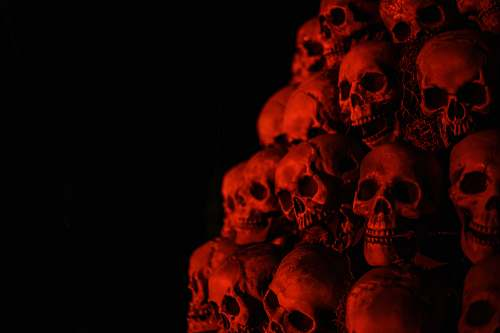 person gray skull wallpaper people