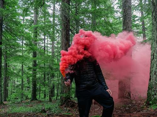 person person holding smoke grenade with red color smoke people