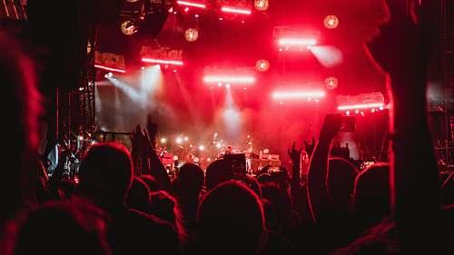 concert photo of people inside concert venue crowd