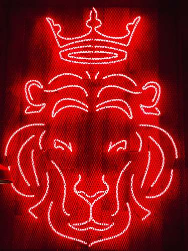 neon lion neon sigange red