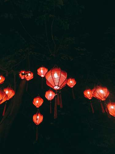 lantern red paper lanterns on green trees lamp