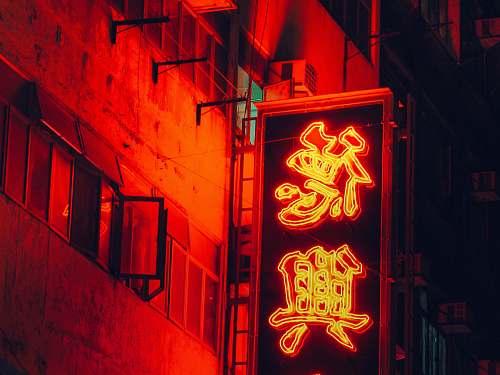 neon selective focus photo of LED signage hong kong