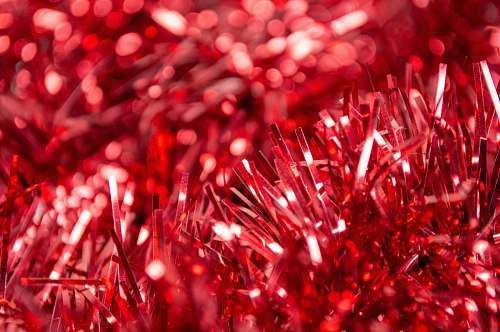 light red grass red