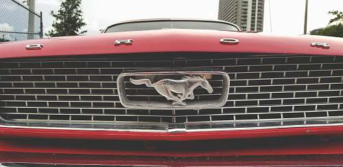 symbol red Ford Mustang trademark