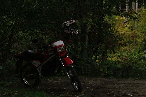 forest black and white motocross dirt bike surrounded by green trees tree